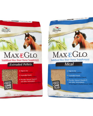 Nutritional Supplements for Horses – SLS Inc