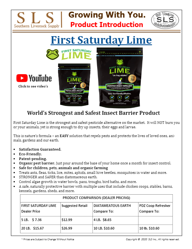 First Saturday Lime Intro-thumbnail